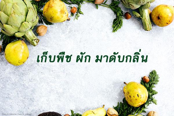 thaihome01