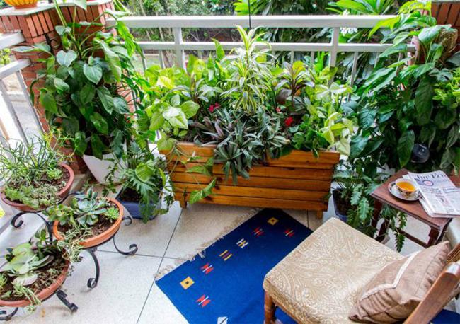 cmc-group-balcony-condo-07